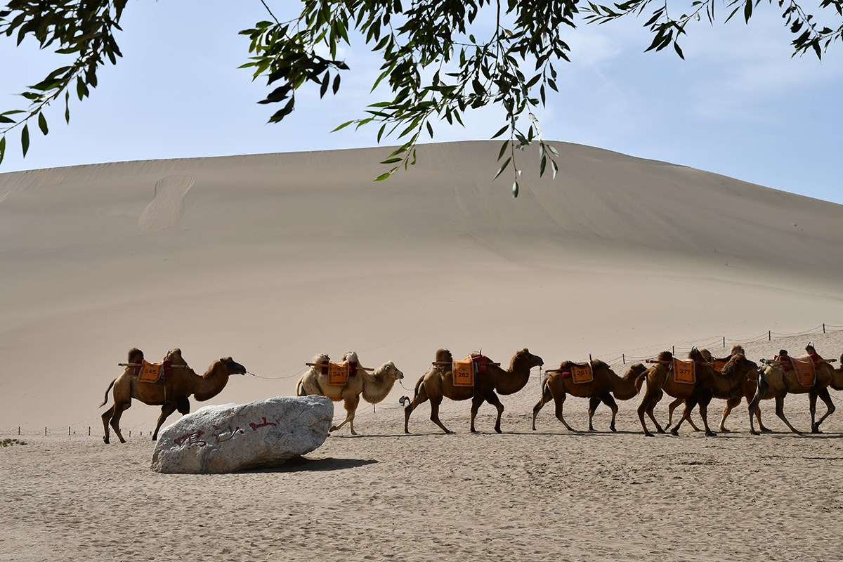 Singing Sand Dunes in Dunhuang | Photo par Liu Bin
